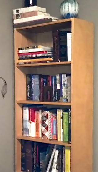 Home-made Bookcase