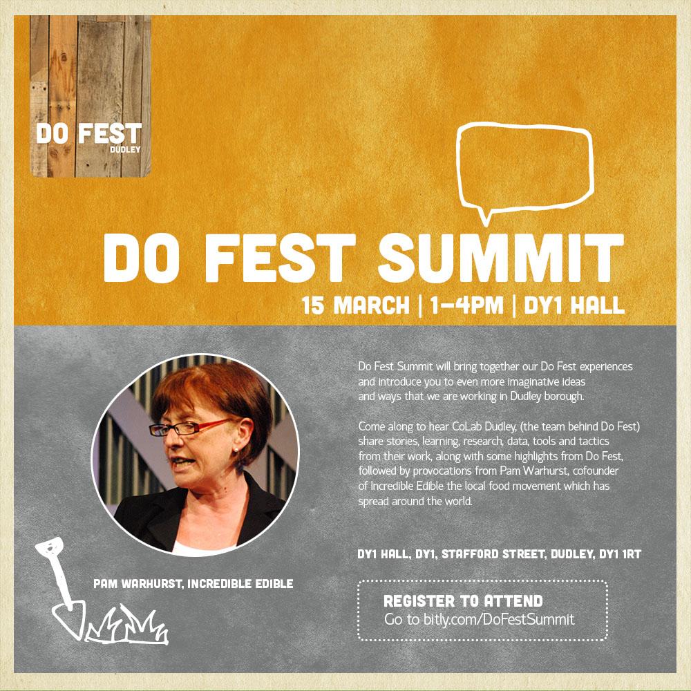 Do Fest Summit flyer