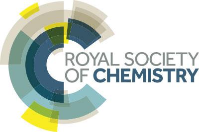 Image result for RSC logo