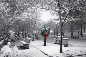 Black and White Snow Street Scene
