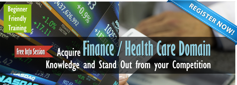 Finance and Health Care Domain Training