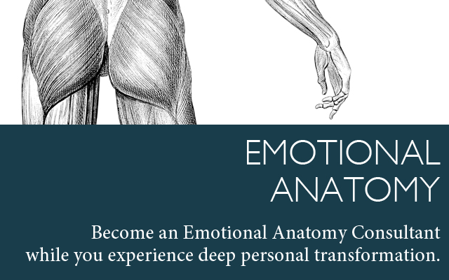 emotional-anatomy-training-soul-space-brisbane