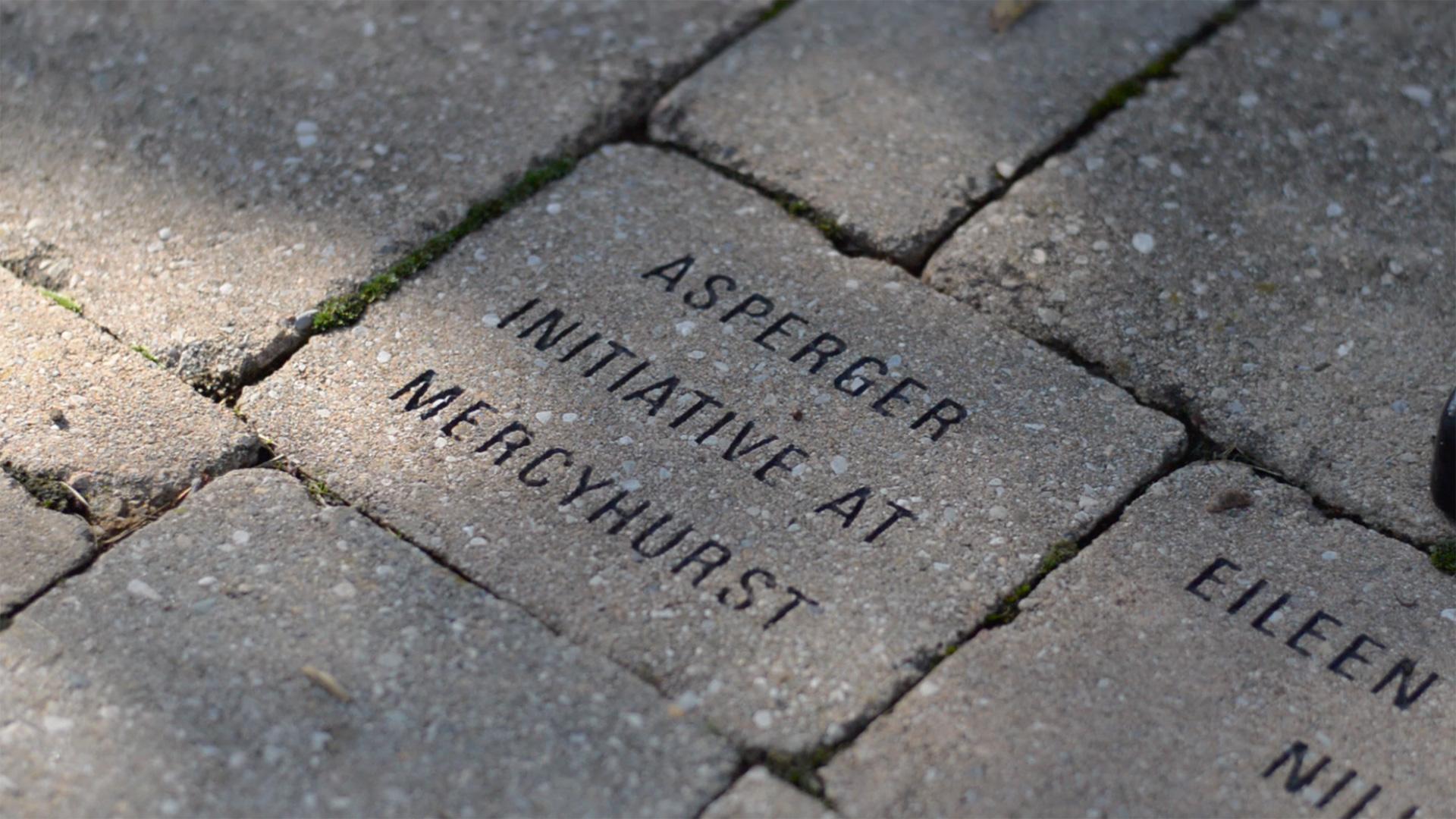 Asperger Initiative at Mercyhurst