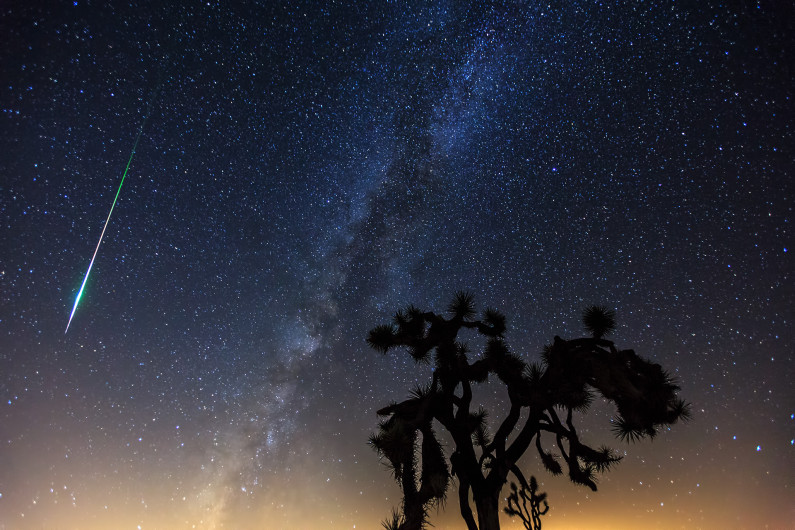 Perseid Meteor over Joshua Tree