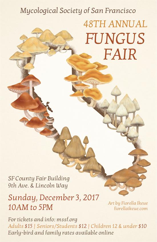 Fungus fair Poster