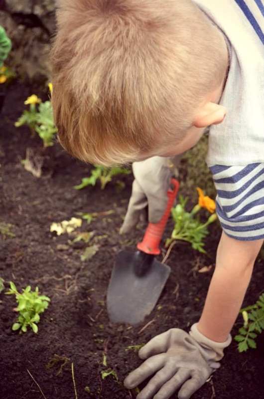 local kids learning gardening